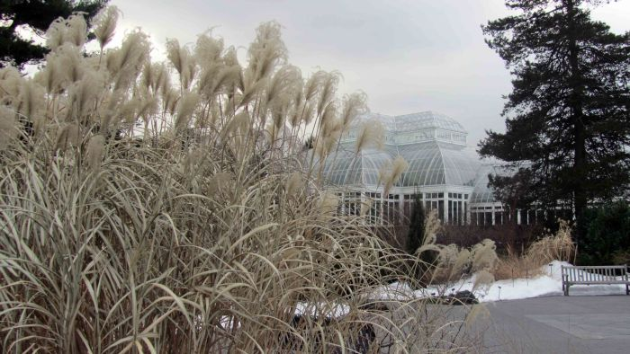 New_york_botanical_garden_25