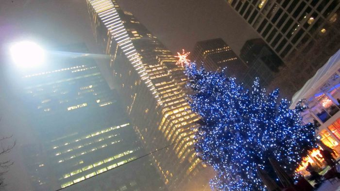 New_york_christmas_2010_21