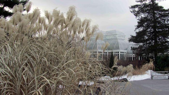 New_york_botanical_garden_25